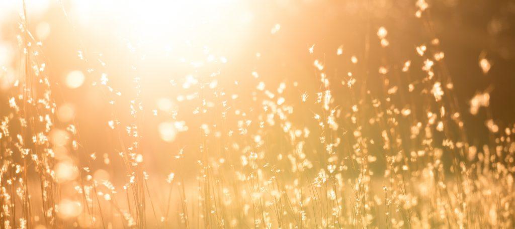 Passiivinen aurinkolämpö ja aurinkokeräin
